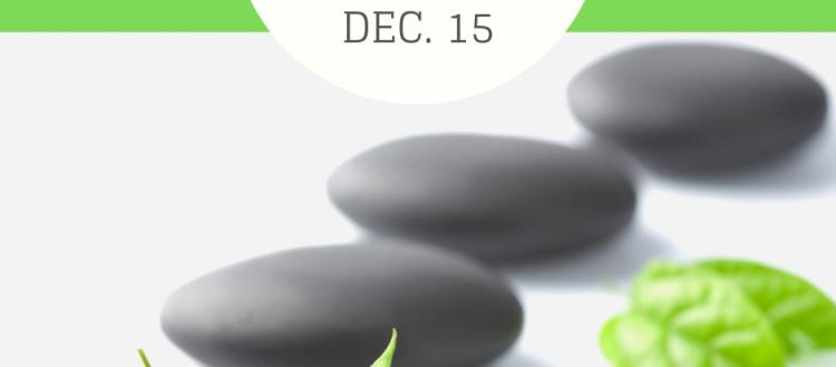 Hot Stone Massage Class Dec. 15
